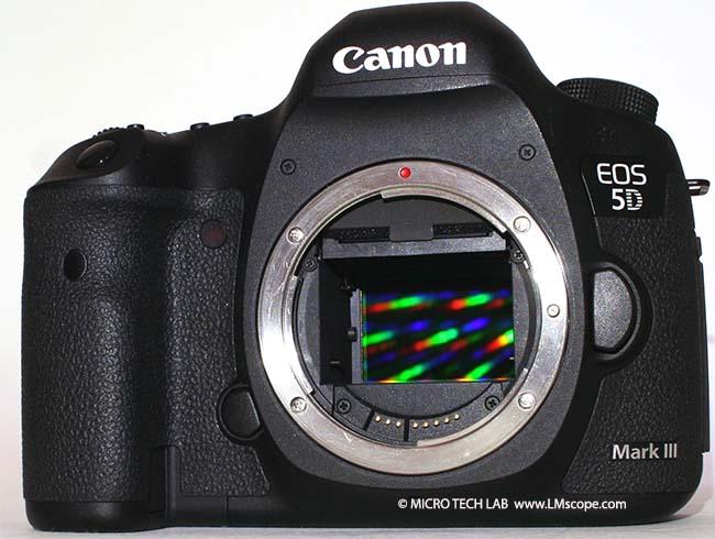 canon5dmarkIII_body